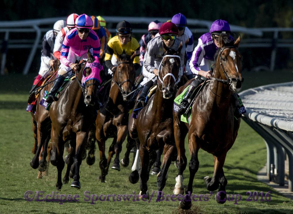 ARCADIA, CA - NOVEMBER 5: Highland Reel #12, ridden by Seamus Heffernan, races in the Longines Breeders' Cup Turf during day two of the 2016 Breeders' Cup World Championships at Santa Anita Park on November 5, 2016 in Arcadia, California. (Photo by Casey Phillips/Eclipse Sportswire/Breeders Cup)