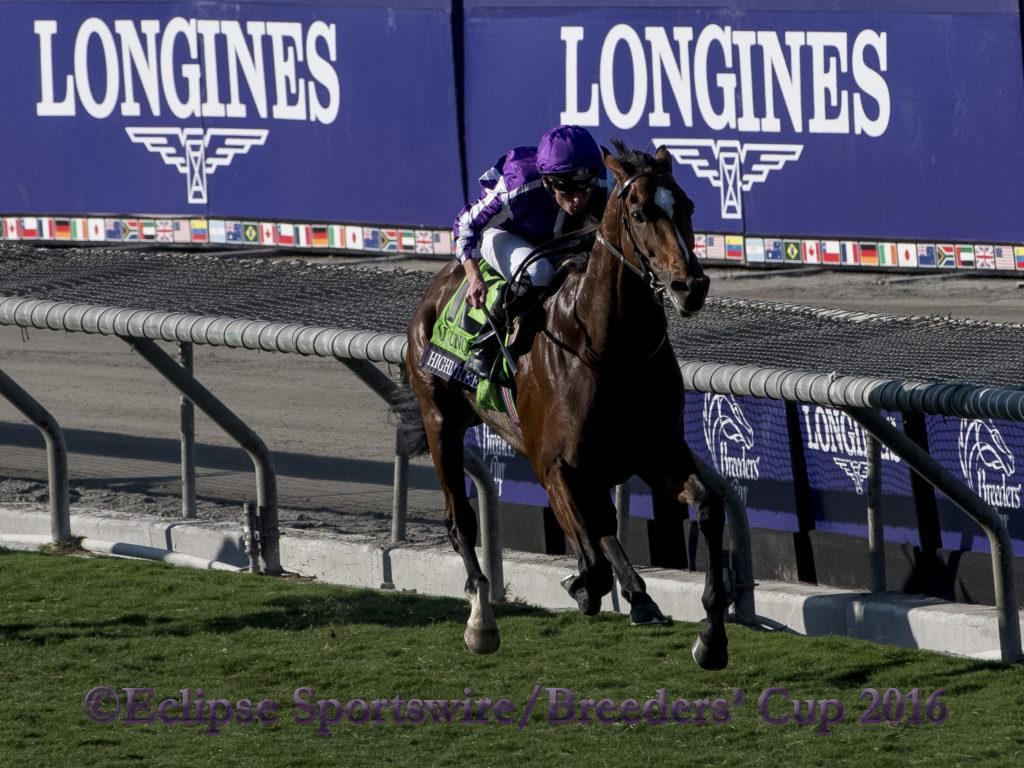 ARCADIA, CA - NOVEMBER 5: Highland Reel #12, ridden by Seamus Heffernan, races in the Longines Breeders' Cup Turf during day two of the 2016 Breeders' Cup World Championships at Santa Anita Park on November 5, 2016 in Arcadia, California. (Photo by Eric Patterson/Eclipse Sportswire/Breeders Cup)
