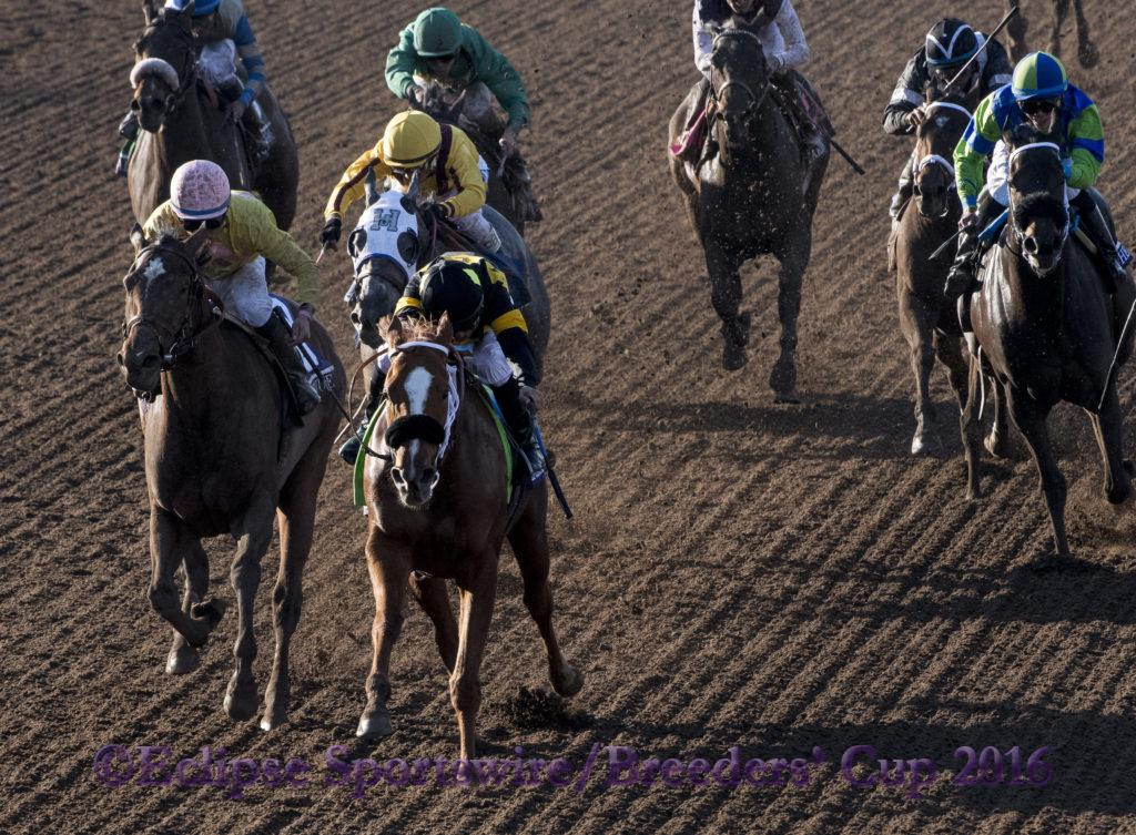 ARCADIA, CA - NOVEMBER 05: Finest City #12, ridden by Mike Smith, wins the Breeders' Cup Filly & Marie Sprint during day two of the 2016 Breeders' Cup World Championships at Santa Anita Park on November 5, 2016 in Arcadia, California. (Photo by Eric Patterson/Eclipse Sportswire/Breeders Cup)