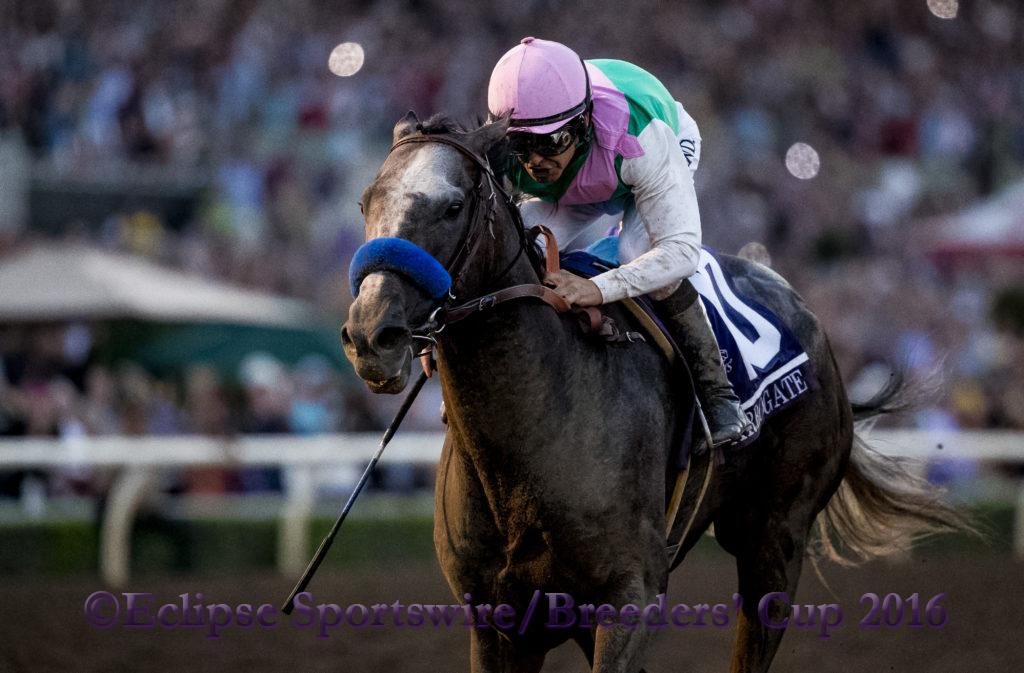 ARCADIA, CA - NOVEMBER 5: Arrogate #10, ridden by Mike Smith, finishes first ahead of California Chrome #4, ridden by Victor Espinoza, in the the Breeders' Cup Classic during day two of the 2016 Breeders' Cup World Championships at Santa Anita Park on November 5, 2016 in Arcadia, California. (Photo by Alex Evers/Eclipse Sportswire/Breeders Cup)