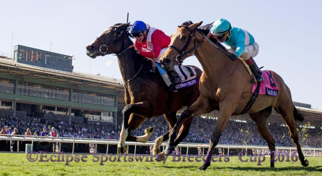 ARCADIA, CA - NOVEMBER 5: Queen's Trust #11, ridden by Lanfranco Dettori, races in the Breeders' Cup Filly & Mare Turf during day two of the 2016 Breeders' Cup World Championships at Santa Anita Park on November 5, 2016 in Arcadia, California. (Photo by Alex Evers/Eclipse Sportswire/Breeders Cup)