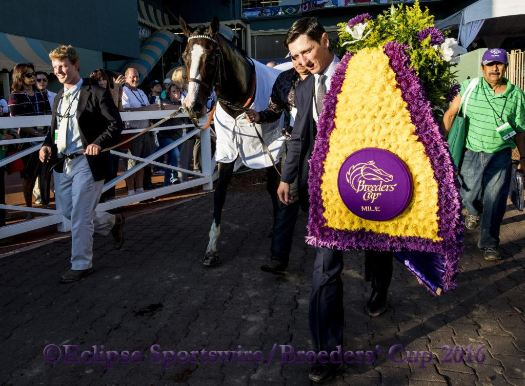 ARCADIA, CA - NOVEMBER 5: Tourist #5, ridden by Joel Rosario wins the the Breeders' Cup Mile during day two of the 2016 Breeders' Cup World Championships at Santa Anita Park on November 5, 2016 in Arcadia, California. (Photo by Jesse Caris/Eclipse Sportswire/Breeders Cup)