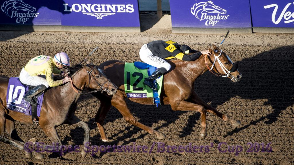 ARCADIA, CA - NOVEMBER 05: Finest City #12, ridden by Mike Smith, wins the Breeders' Cup Filly & Marie Sprint during day two of the 2016 Breeders' Cup World Championships at Santa Anita Park on November 5, 2016 in Arcadia, California. (Photo by Michael McInally/Eclipse Sportswire/Breeders Cup)