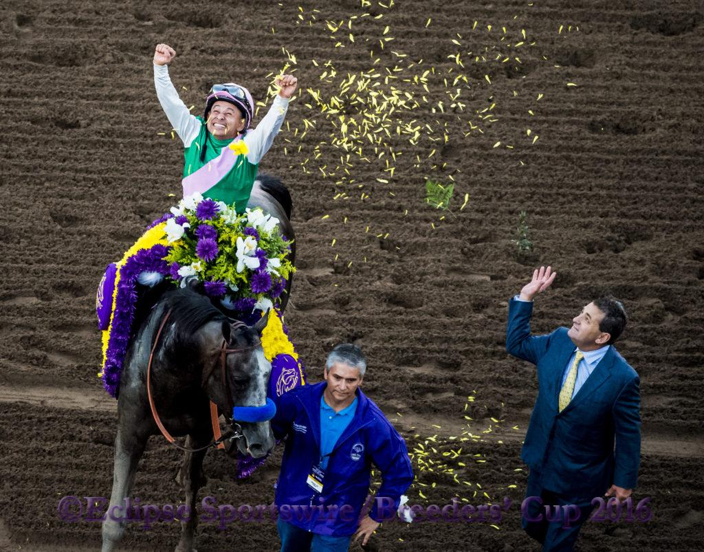 ARCADIA, CA - NOVEMBER 05: Arrogate #10, ridden by Mike Smith, overtakes California Chrome #4, ridden by Victor Espinoza, on his way to win the Breeders' Cup Classic during day two of the 2016 Breeders' Cup World Championships at Santa Anita Park on November 5, 2016 in Arcadia, California. (Photo by Michael McInally/Eclipse Sportswire/Breeders Cup)