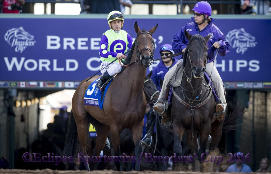 ARCADIA, CA - NOV 04: #3 New Money Honey ridden by Javier Castellano wins the Breeders' Cup Juvenile Fillies Turf, at Santa Anita Park on November 4, 2016 in Arcadia, California. (Photo by Alex Evers/Eclipse Sportswire/Breeders Cup)