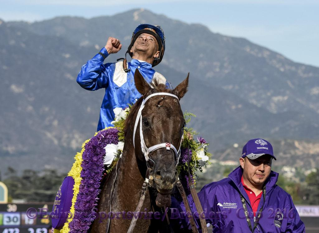 ARCADIA, CA - NOV 4: Tamarkuz #8, ridden by Mike Smith, wins the Breeders' Cup Dirt Mile at Santa Anita Park on November 4, 2016 in Arcadia, California. (Photo by Bob Mayberger/Eclipse Sportswire/Breeders Cup)
