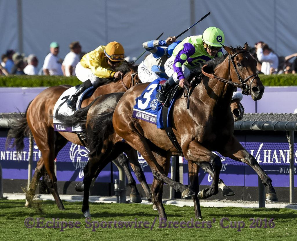 ARCADIA, CA - NOV 04: #3 New Money Honey ridden by Javier Castellano wins the Breeders' Cup Juvenile Fillies Turf, at Santa Anita Park on November 4, 2016 in Arcadia, California. (Photo by Bob Mayberger/Eclipse Sportswire/Breeders Cup)