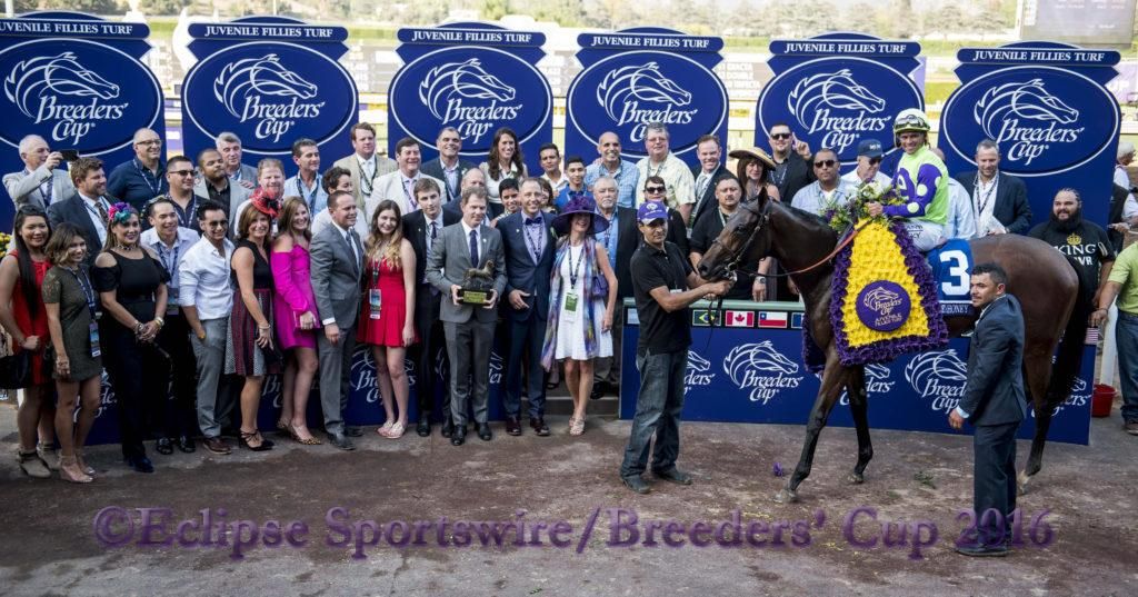 ARCADIA, CA - NOV 04: #3 New Money Honey ridden by Javier Castellano wins the Breeders' Cup Juvenile Fillies Turf, at Santa Anita Park on November 4, 2016 in Arcadia, California. (Photo by Doug DeFelice/Eclipse Sportswire/Breeders Cup)