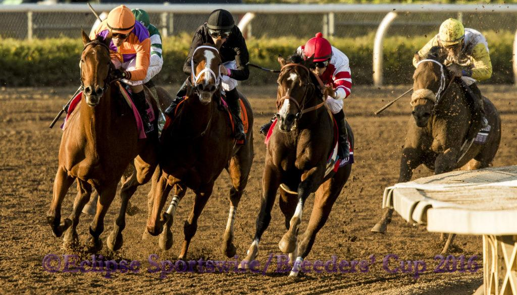 ARCADIA, CA - NOV 4:  Beholder #8, ridden by Gary Stevens (orange) overtakes Songbird #1, ridden by Mike Smith to win the Breeders' Cup Distaff, at Santa Anita Park on November 4, 2016 in Arcadia, California. (Photo by /Casey Phillips/Eclipse Sportswire/Breeders Cup)