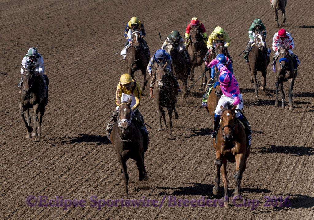 ARCADIA, CA - NOVEMBER 05: Champagne Room #6, ridden by Mario Gutierrez, wins the 14 Hands Winery Breeders' Cup Juvenile Fillies during the 2016 Breeders' Cup World Championships at Santa Anita Park on November 5, 2016 in Arcadia, California. (Photo byEric Patterson/Eclipse Sportswire/Breeders Cup)