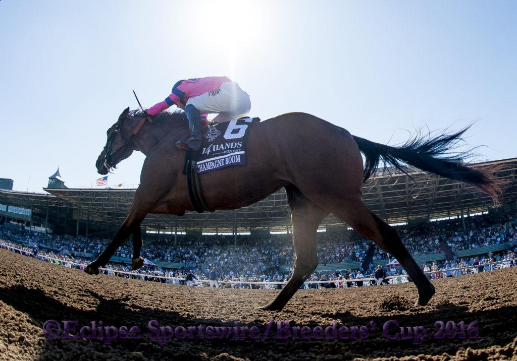 ARCADIA, CA - NOVEMBER 05: Champagne Room #6, ridden by Mario Gutierrez, wins the 14 Hands Winery Breeders' Cup Juvenile Fillies during the 2016 Breeders' Cup World Championships at Santa Anita Park on November 5, 2016 in Arcadia, California. (Photo by Alex Evers/Eclipse Sportswire/Breeders Cup)