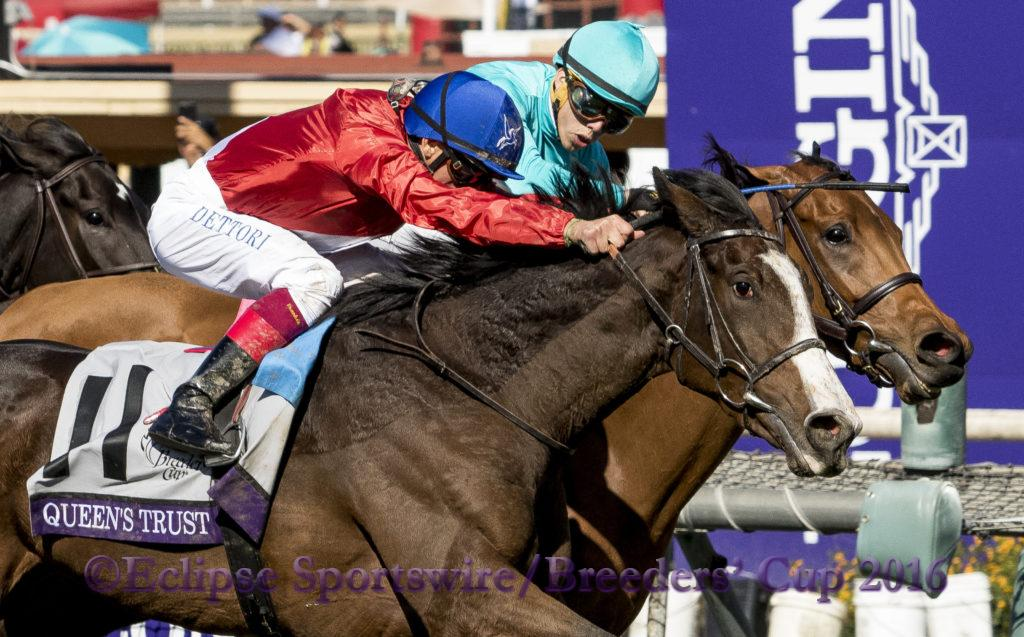 ARCADIA, CA - NOVEMBER 05: during day two of the 2016 Breeders' Cup World Championships at Santa Anita Park on November 5, 2016 in Arcadia, California. (Photo by Taylor Pence/Eclipse Sportswire/Breeders Cup)