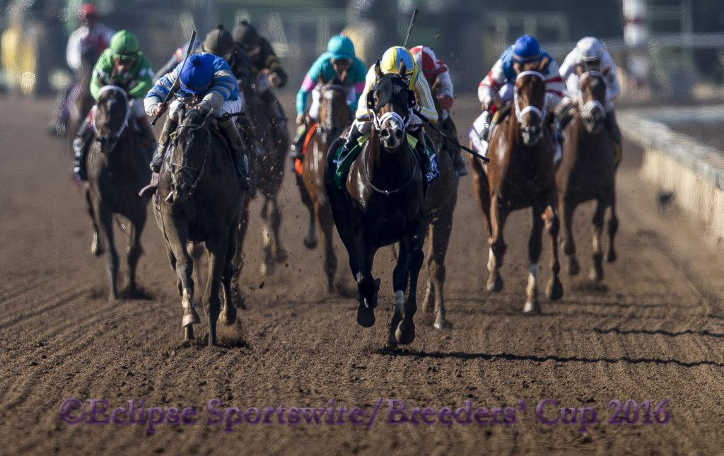 ARCADIA, CA - NOVEMBER 5: Classic Empire #5, ridden by Julien Leparoux, races in the the Breeders' Cup Filly & Mare Turf during day two of the 2016 Breeders' Cup World Championships at Santa Anita Park on November 5, 2016 in Arcadia, California. (Photo by Eric Patterson/Eclipse Sportswire/Breeders Cup)