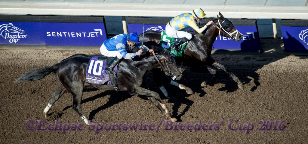 ARCADIA, CA - NOVEMBER 5: Classic Empire #5, ridden by Julien Leparoux, races in the the Breeders' Cup Filly & Mare Turf during day two of the 2016 Breeders' Cup World Championships at Santa Anita Park on November 5, 2016 in Arcadia, California. (Photo by Michael McInally/Eclipse Sportswire/Breeders Cup)