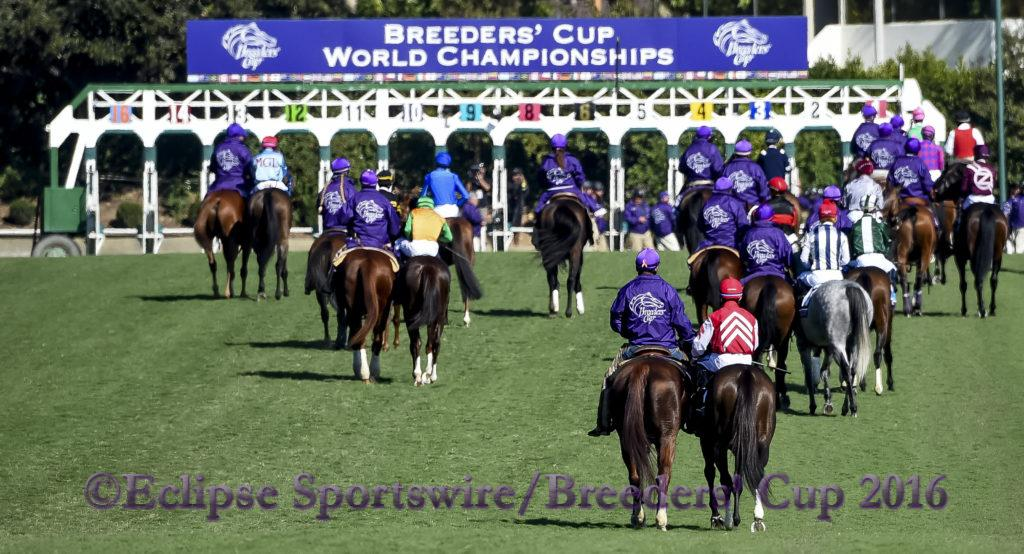 ARCADIA, CA - NOVEMBER 05: Obviously #2, ridden by Flavien Prat, wins the Breeders' Cup Turf Sprint during day two of the 2016 Breeders' Cup World Championships at Santa Anita Park on November 5, 2016 in Arcadia, California. (Photo by Bob Mayberger/Eclipse Sportswire/Breeders Cup)