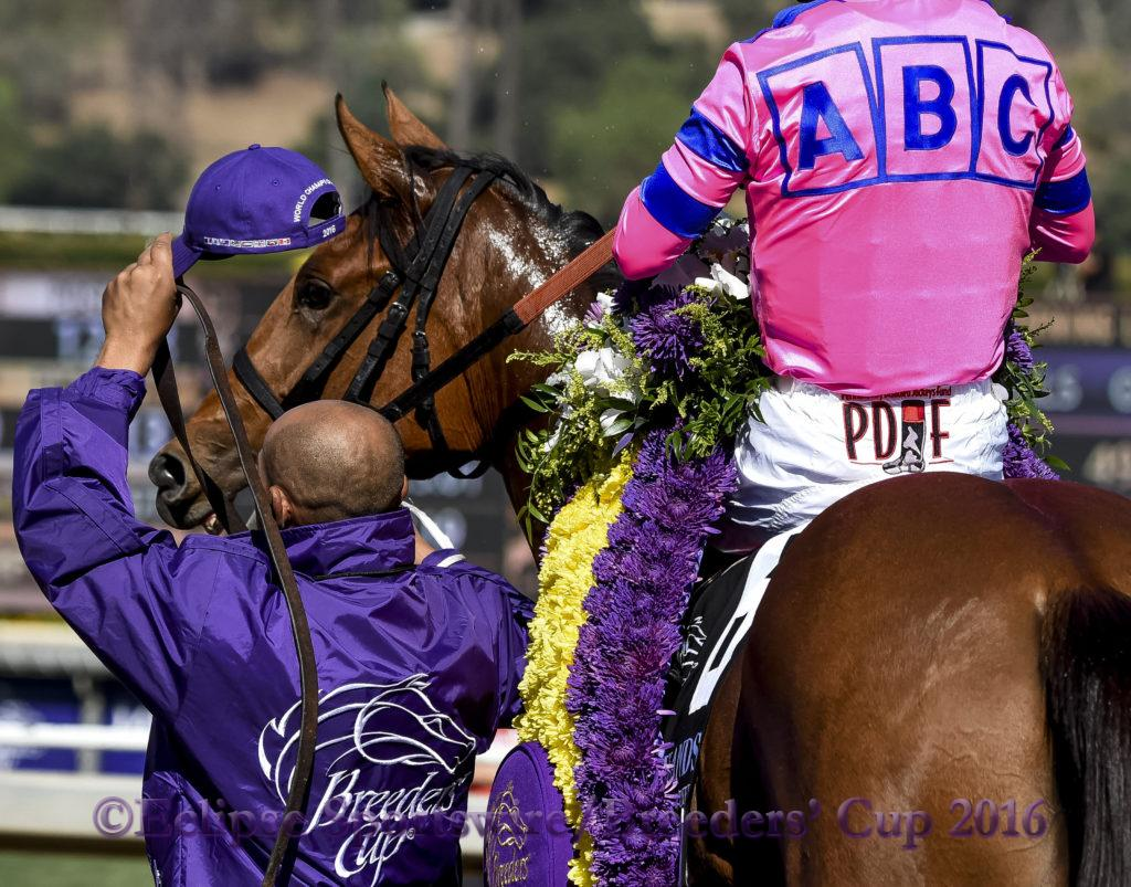 ARCADIA, CA - NOVEMBER 05: Champagne Room #6, ridden by Mario Gutierrez, wins the 14 Hands Winery Breeders' Cup Juvenile Fillies during the 2016 Breeders' Cup World Championships at Santa Anita Park on November 5, 2016 in Arcadia, California. (Photo by Bob Mayberger/Eclipse Sportswire/Breeders Cup)