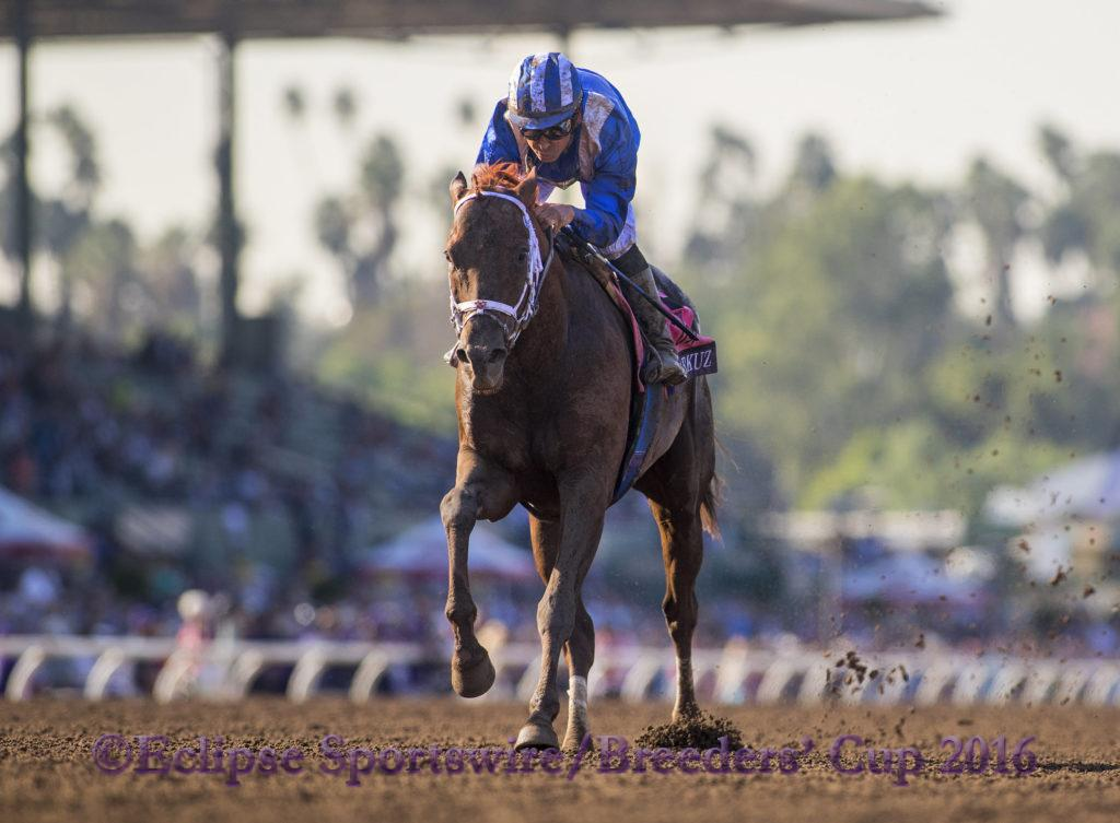 ARCADIA, CA - NOV 4: Tamarkuz #8, ridden by Mike Smith, wins the Breeders' Cup Dirt Mile at Santa Anita Park on November 4, 2016 in Arcadia, California. (Photo by Alex Evers/Eclipse Sportswire/Breeders Cup)