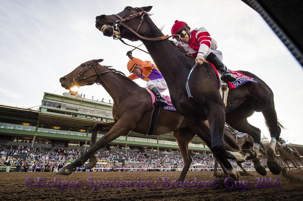 ARCADIA, CA - NOV 4:  Beholder #8, ridden by Gary Stevens (orange) overtakes Songbird #1, ridden by Mike Smith to win the Breeders' Cup Distaff, at Santa Anita Park on November 4, 2016 in Arcadia, California. (Photo by Alex Evers/Eclipse Sportswire/Breeders Cup)