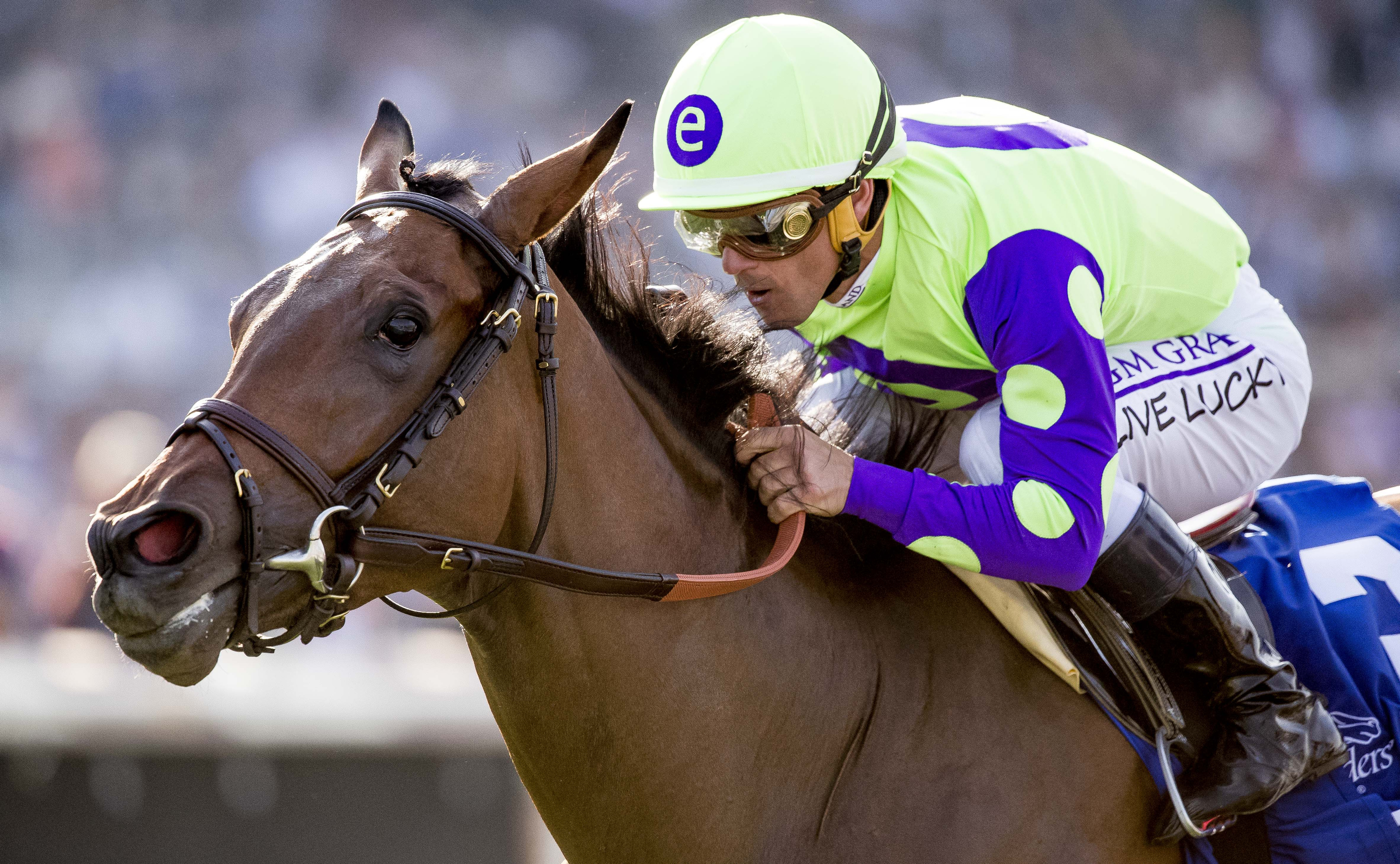 Breeders Cup Juvenile Fillies Turf New Money Honey 5