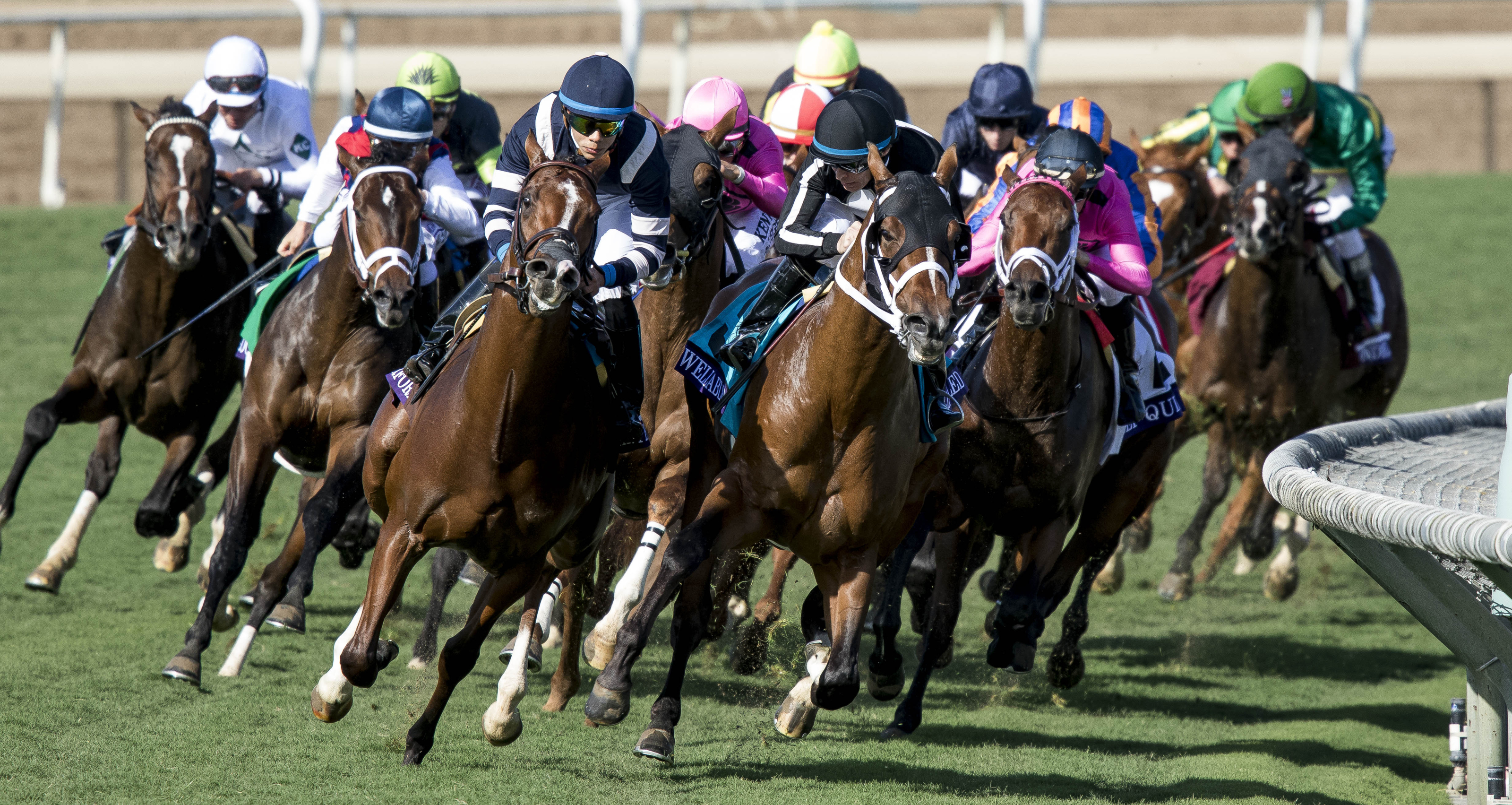 Breeders Cup Juvenile Turf Oscar Performance 8