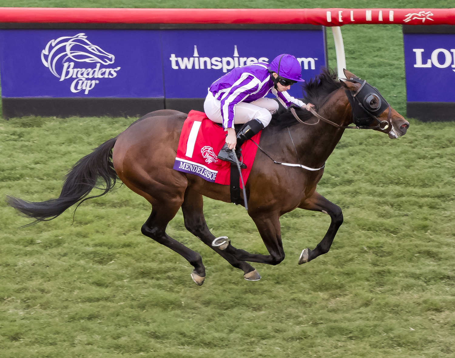 Breeders Cup Photography